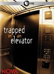 Trapped in an Elevator: Nova
