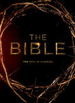The Bible: The Epic Miniseries (2013) [TV]