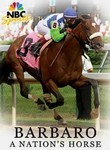 Barbaro: A Nation's Horse