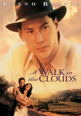 Rent A Walk in the Clouds on DVD