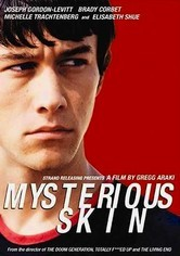 Rent Mysterious Skin on DVD