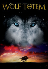Rent Wolf Totem on DVD