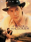 A Walk in the Clouds (1995) Box Art