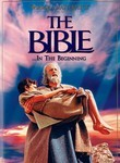 The Bible... In the Beginning