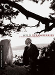 Wild Strawberries (Smultronstllet) poster