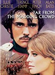 Far from the Madding Crowd (1967) Box Art